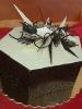 Torta na želanie_21